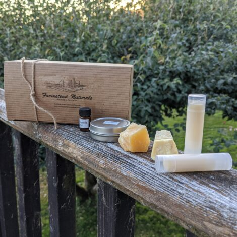 DIY Lip balm Kit Auction by Farmstead Naturals Handcrafted Natural Soaps and Salves Bath & Beauty Products